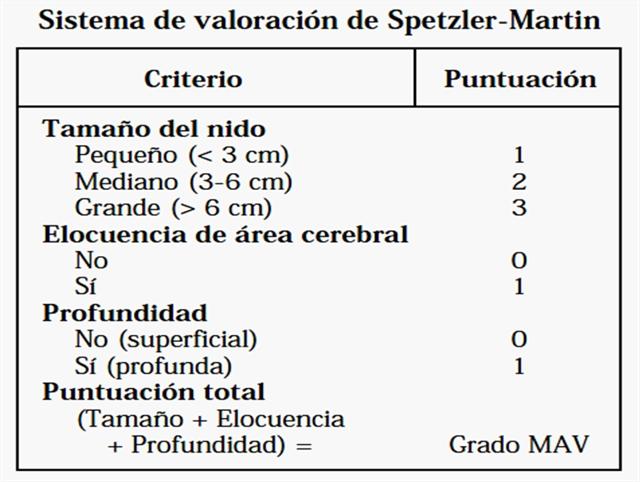 Clasificación de Spetzler - Martin