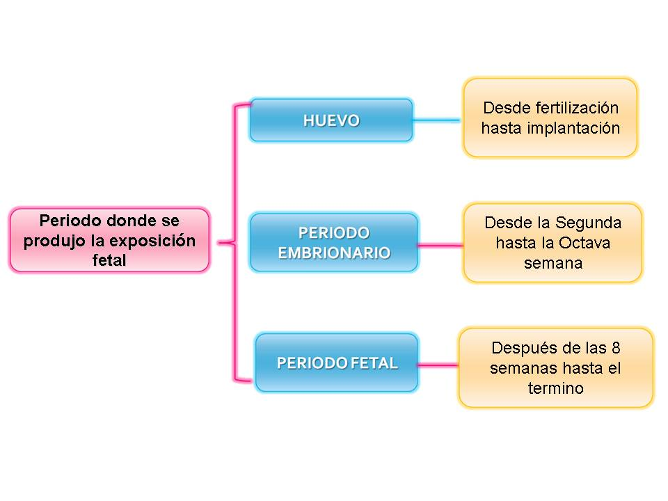 teratogenesis